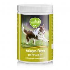 티어리브 콜라겐 파우더(개/고양이용)